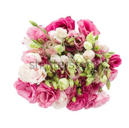 bouquet of  eustoma flowers from above Stock photo © neirfy