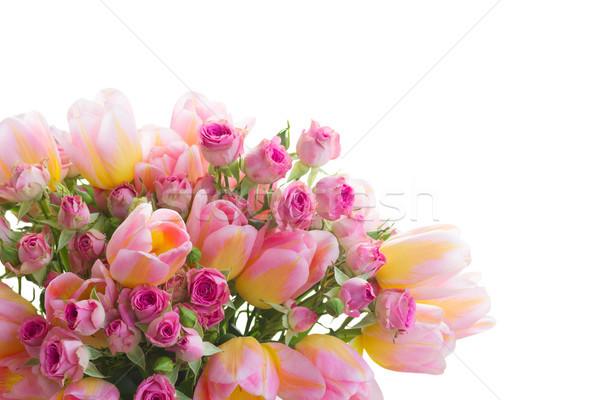 Bouquet tulipani rose fresche rosa isolato Foto d'archivio © neirfy