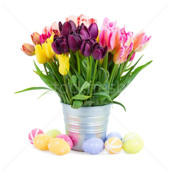ストックフォト: チューリップ · 花 · イースターエッグ · 春 · 孤立した