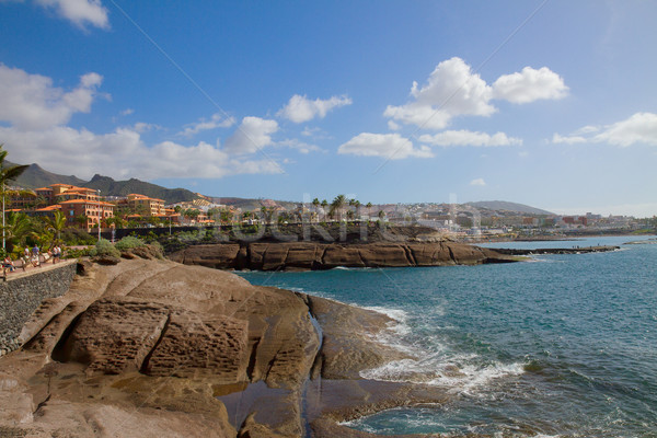 south coast of Tenerife, Spain Stock photo © neirfy