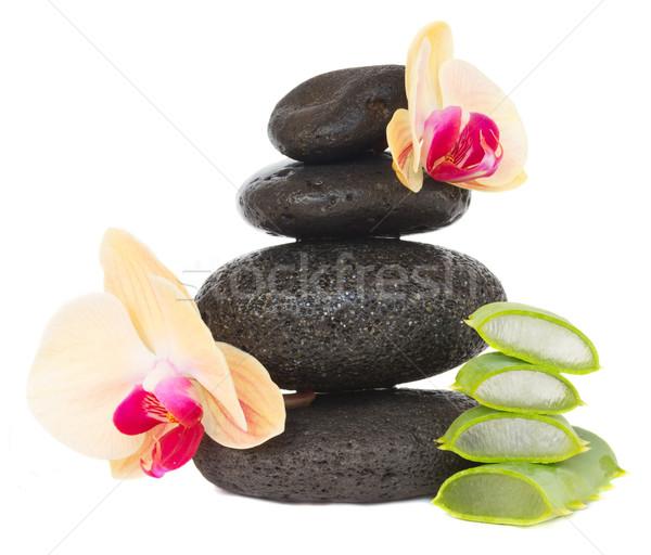 Masaj taşlar aloe siyah orkide parçalar Stok fotoğraf © neirfy