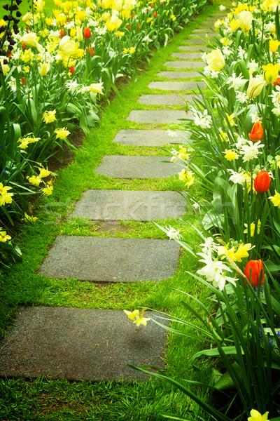 Stone walk way winding in garden Stock photo © neirfy