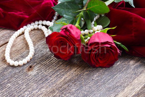 Vörös rózsák bársony kettő friss piros rózsa virágok Stock fotó © neirfy