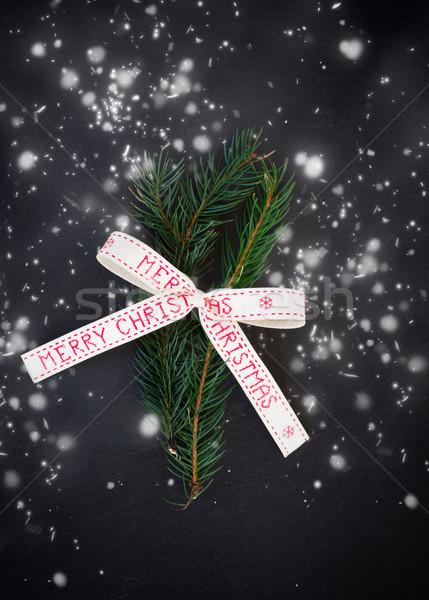 Yaprak dökmeyen neşeli Noel yay siyah kar Stok fotoğraf © neirfy
