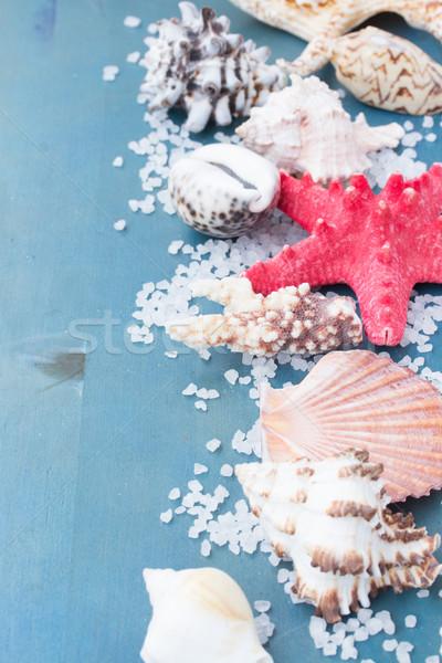 border os sea salt and shells Stock photo © neirfy