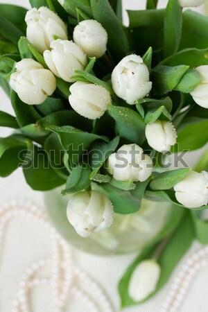 bouquet of white  tulips Stock photo © neirfy