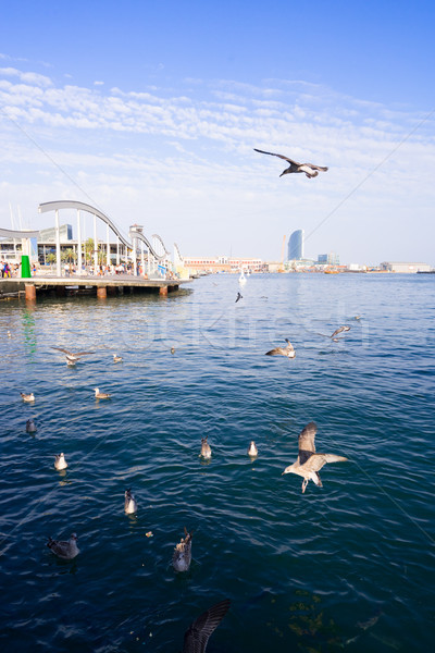 Barcelona İspanya merkezi sokak su deniz Stok fotoğraf © neirfy