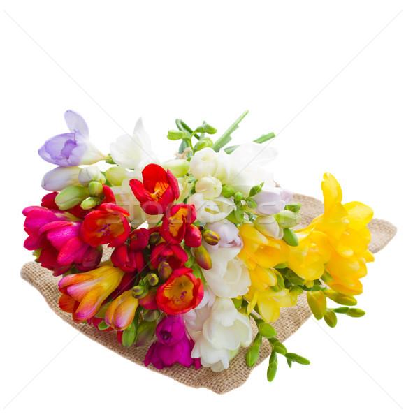 Ramo flores blanco fondo Foto stock © neirfy