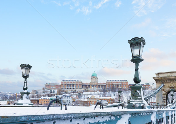 Royal Palace  in Budapest Stock photo © neirfy