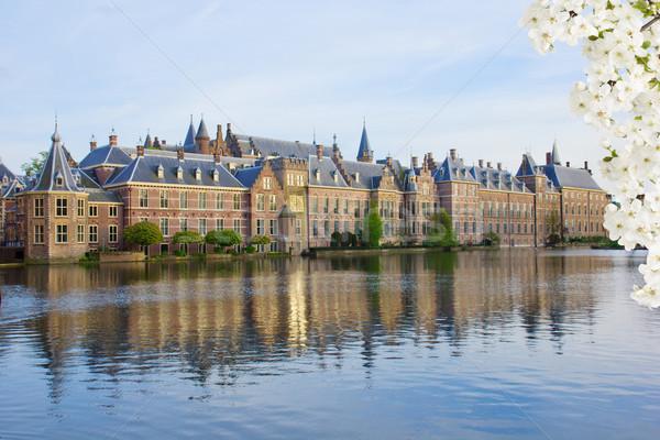 オランダ語 議会 オランダ 春 日 花 ストックフォト © neirfy