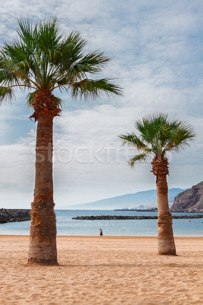 Strand Teneriffa Spanien Ansicht Sommer Tag Stock foto © neirfy