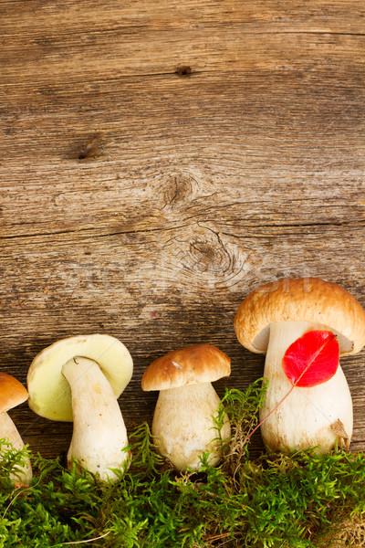 Paddestoel champignons houten rij mos houten tafel Stockfoto © neirfy