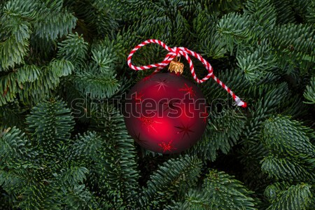 クリスマス 常緑 ツリー 新鮮な 赤 ボール ストックフォト © neirfy