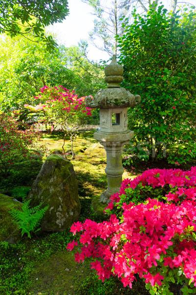 Японский саду зеленая трава деревья весны Сток-фото © neirfy