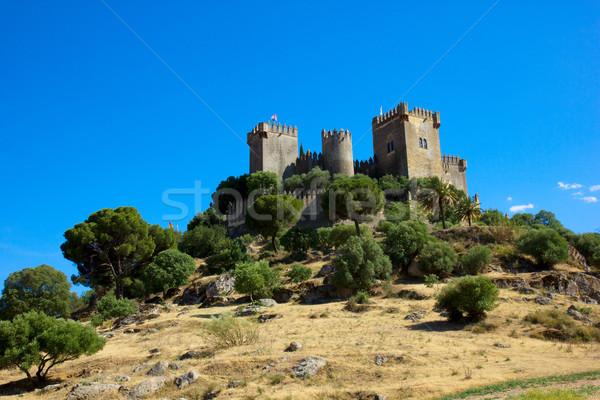 Сток-фото: Рио · Испания · замок · весны · стены · деревья
