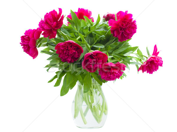 bouquet of peonies Stock photo © neirfy