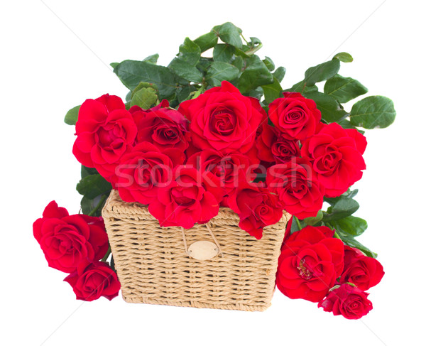 bouquet of scarlet roses with basket Stock photo © neirfy