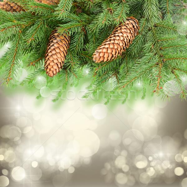 chrismas tree and pine cones Stock photo © neirfy