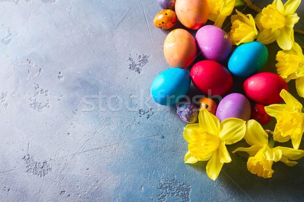 イースター 黄色の花 色の卵 グレー 食品 幸せ ストックフォト © neirfy