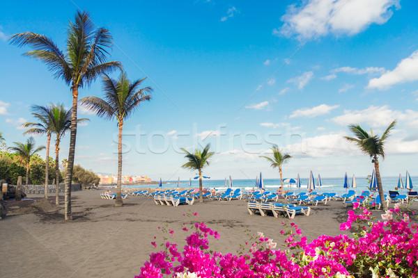 La tenerife strand natuurlijke zwarte zand Stockfoto © neirfy