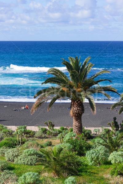 playa Jardin (beach garden), Puerto de la Cruz, Spain Stock photo © neirfy