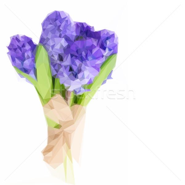Baixo azul jacinto ilustração fresco flores Foto stock © neirfy