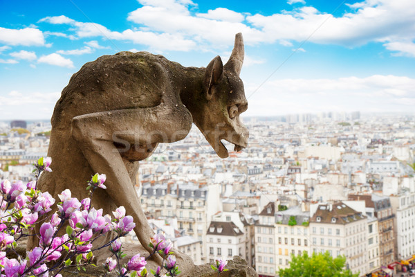 Gargoyle on Notre Dame Cathedral, France Stock photo © neirfy