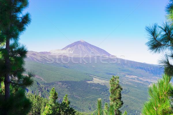 volcan Teide, Tenerife island Stock photo © neirfy