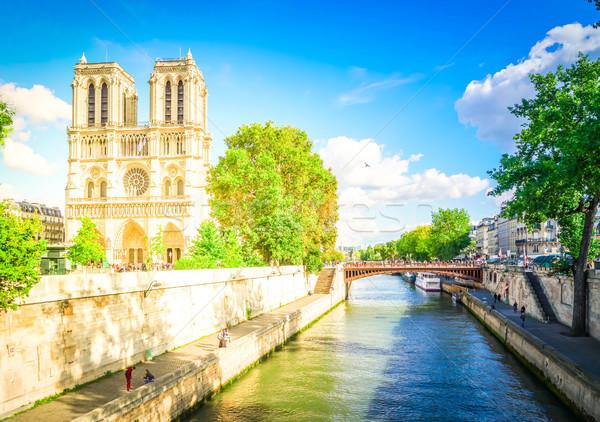 Catedral de Notre Dame Paris França rio retro Foto stock © neirfy