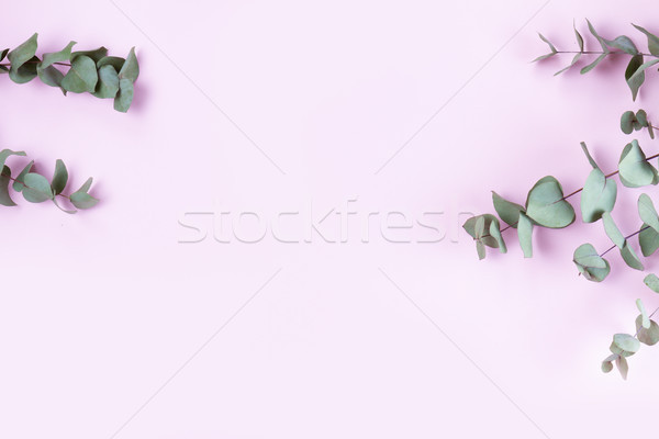 Green floral composition Stock photo © neirfy