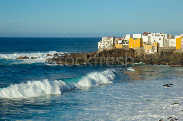 wild coast in  Puerto de la Cruz, Tenerife, Spain Stock photo © neirfy