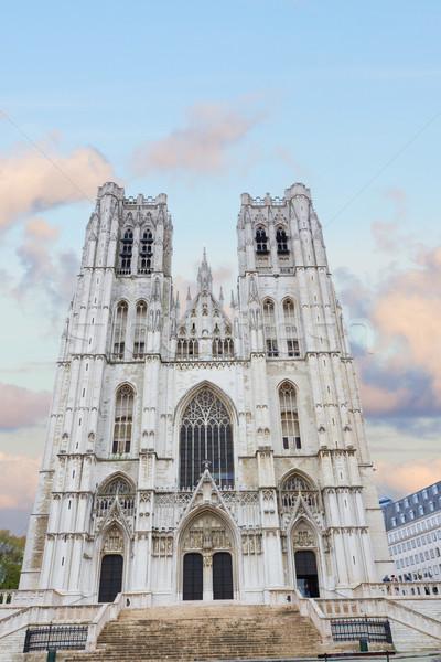 собора Брюссель Бельгия город Церкви путешествия Сток-фото © neirfy