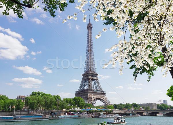 Eiffel gira río árbol primavera flores Foto stock © neirfy