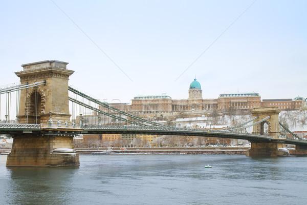 ストックフォト: ブダペスト · ハンガリー · チェーン · 橋 · ロイヤル · 宮殿