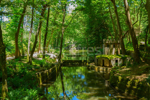 Gardens of Pena, SIntra, Portugal Stock photo © neirfy