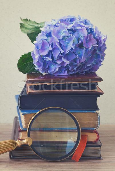 Foto stock: Velho · livros · flores · vintage · azul