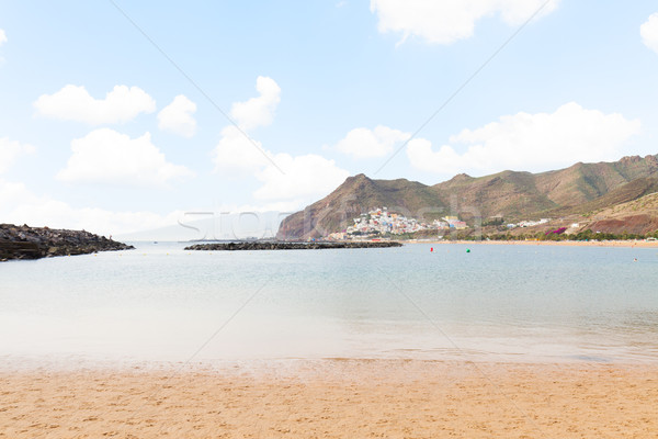 Strand tenerife Spanje palmen Stockfoto © neirfy
