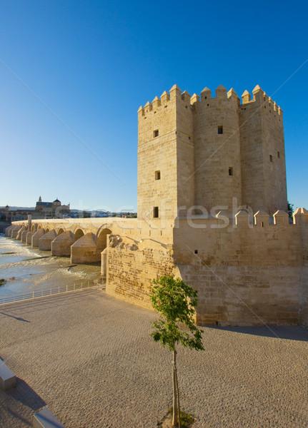 Torre Calahorra, Cordoba, Spain Stock photo © neirfy