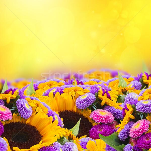 mixed autumn flowers Stock photo © neirfy