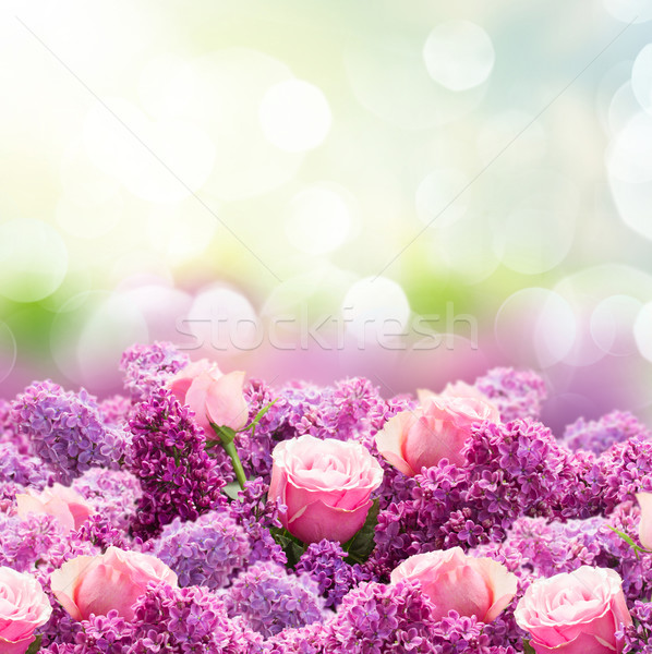 Lilac and rose flowers Stock photo © neirfy