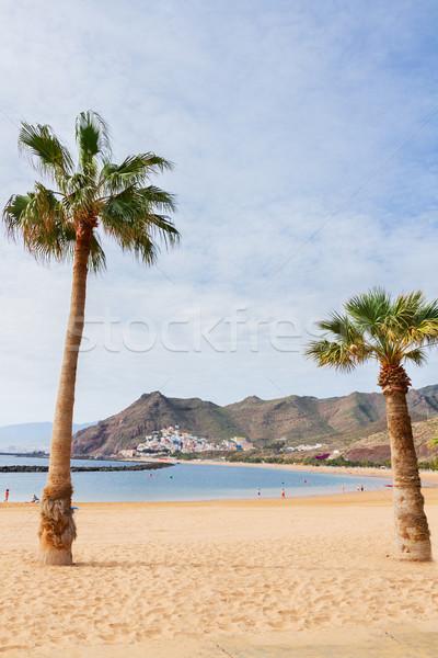 beach Las Teresitas, Tenerife, Spain Stock photo © neirfy