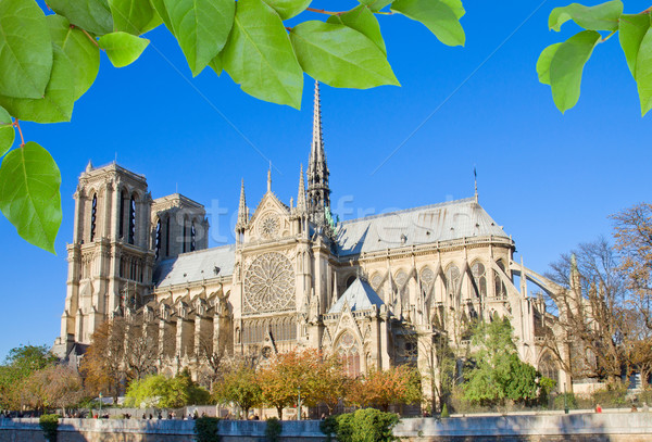 Notre Dame cathedral, Paris, France Stock photo © neirfy
