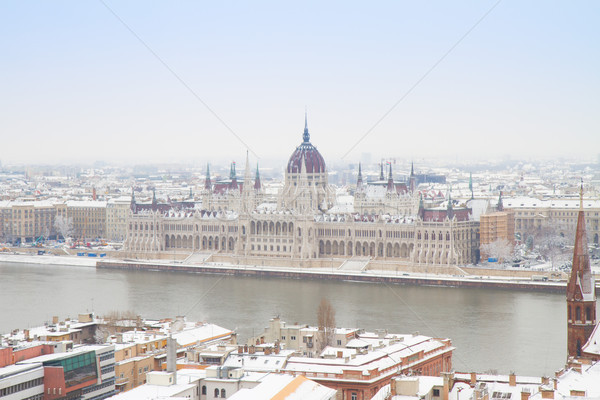 Ház parlament Budapest épület folyó Magyarország Stock fotó © neirfy