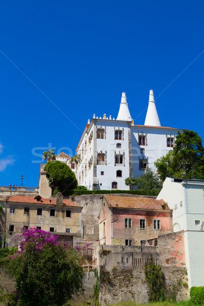 Palácio Portugal cityscape edifício mundo Foto stock © neirfy