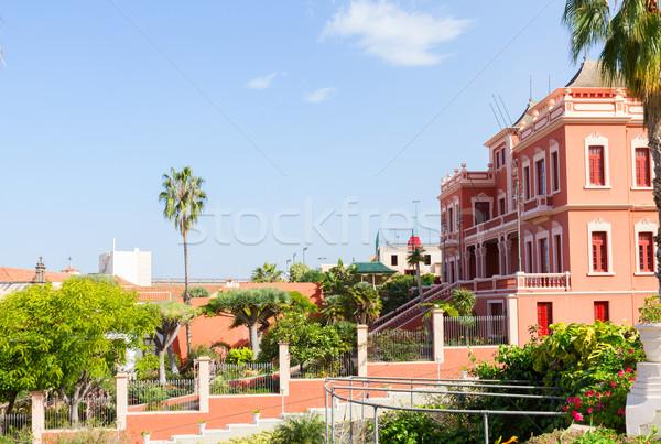 La tenerife Spanje tuinen eiland hemel Stockfoto © neirfy