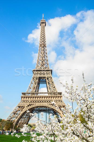 エッフェル塔 パリ 景観 春 白 ストックフォト © neirfy