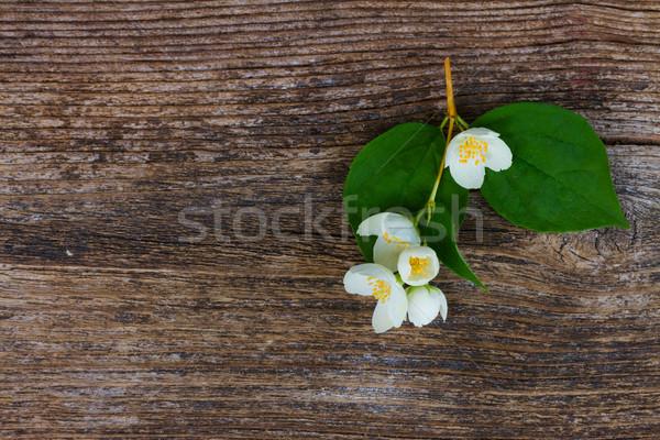 Stock fotó: Virágok · fa · asztal · friss · levelek · mintázott · fából · készült