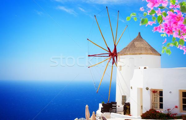 Szélmalom Santorini napos idő közelkép virágok város Stock fotó © neirfy
