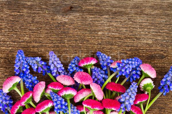 Papatya çiçekler ahşap masa sınır bahar düğün Stok fotoğraf © neirfy