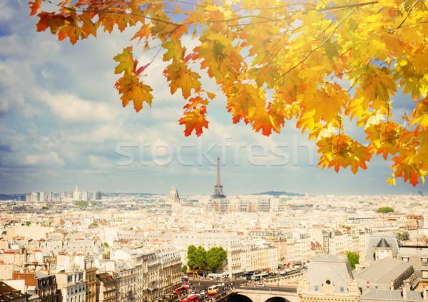 Stok fotoğraf: Ufuk · çizgisi · Paris · Eyfel · Kulesi · şehir · çatılar · üzerinde